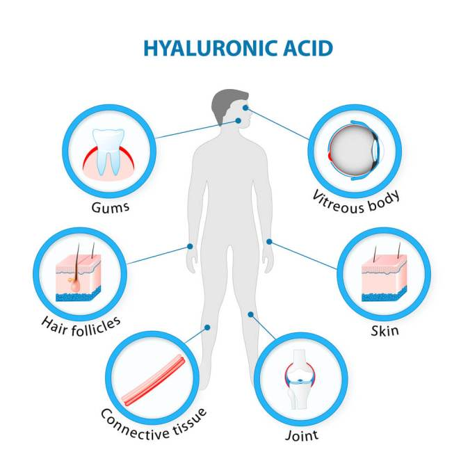 Acid-hialuronic-1
