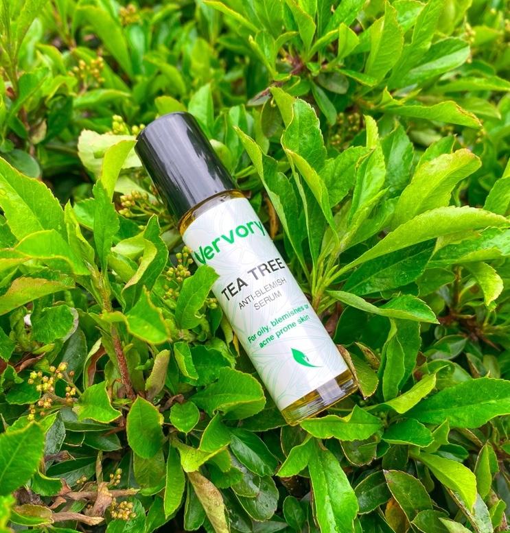 Vervory-tea-tree-serum